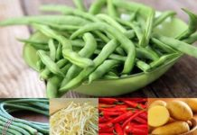 #EzRepost @zaidulakbar.fanbase with @repostigapp  3 porsi aja sayuran warna war...